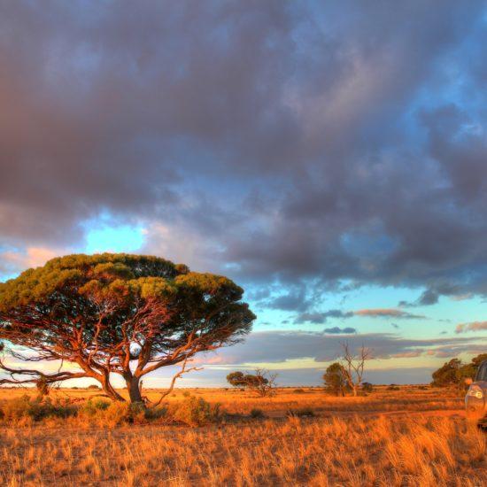 Australia Biuro podróży Goforworld by Kuźniar