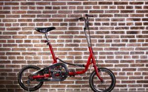 Cykliści 2016 Biuro podróży Goforworld by Kuźniar