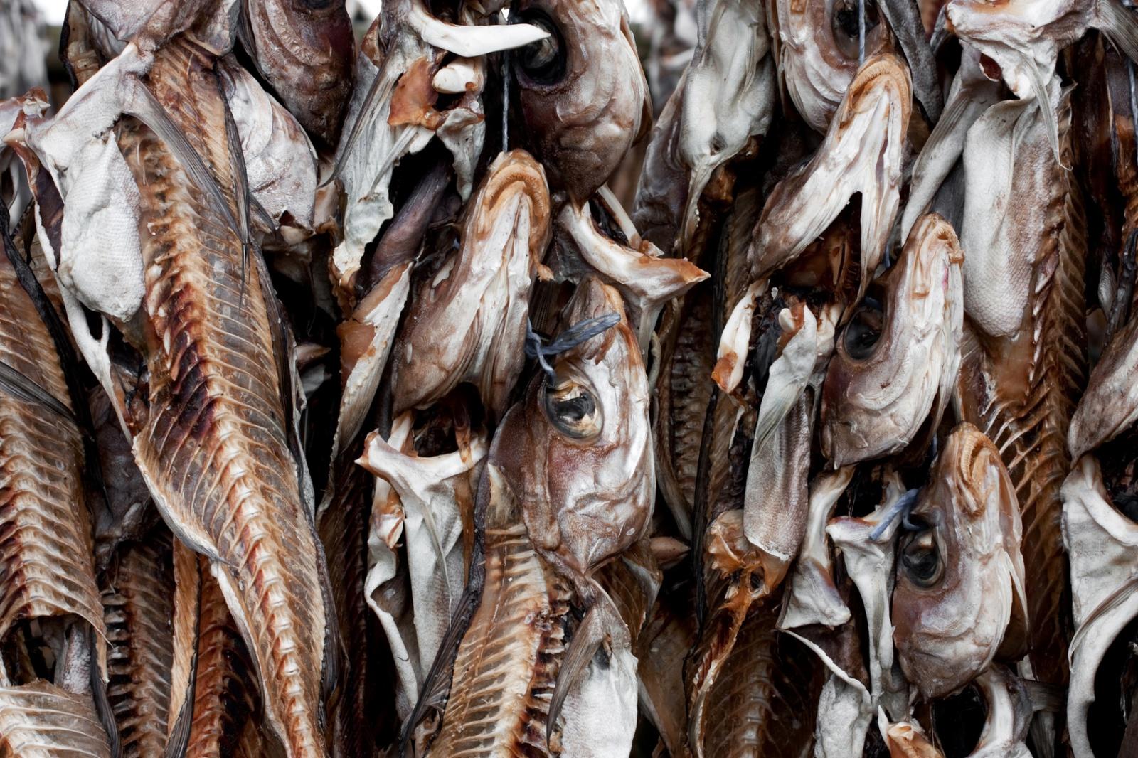 10 ekstremalnych potraw z Islandii Biuro podróży Goforworld by Kuźniar