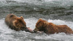 Alaska nieskażona Biuro podróży Goforworld by Kuźniar