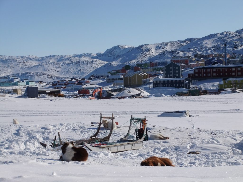 Grenlandia5