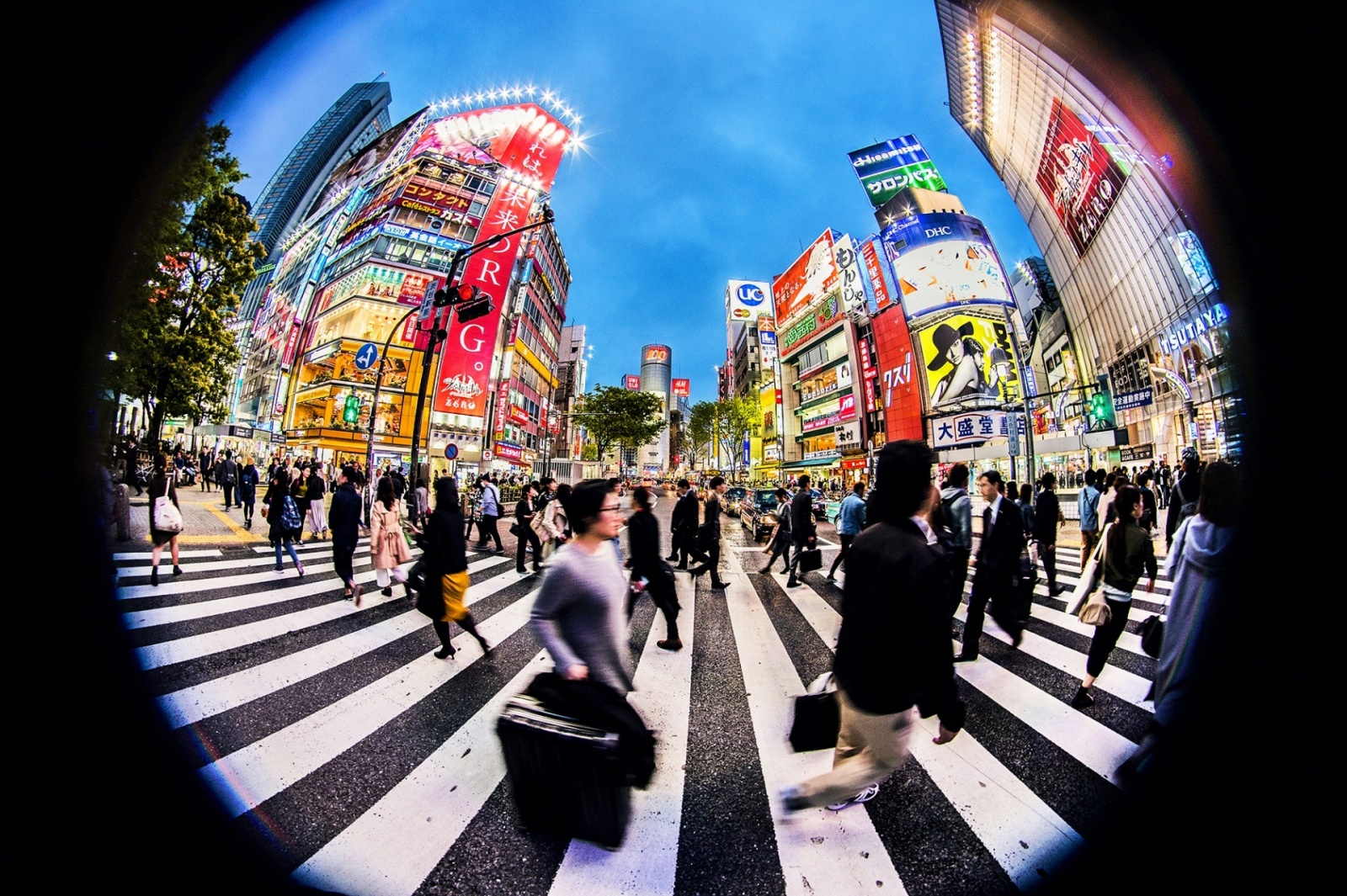 Tokio nocą Biuro podróży Goforworld by Kuźniar