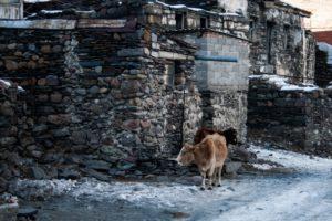 Kierunek - Kazbegi Biuro podróży Goforworld by Kuźniar