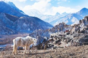 Nepal | #gofordream Biuro podróży Goforworld by Kuźniar