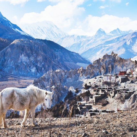 Nepal Biuro podróży Goforworld by Kuźniar
