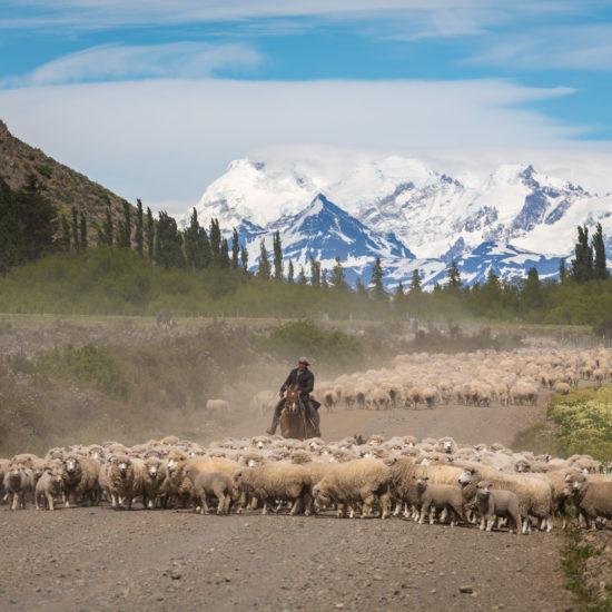 Patagonia Biuro podróży Goforworld by Kuźniar