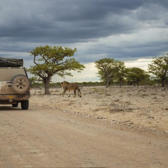 Namibia Biuro podróży Goforworld by Kuźniar
