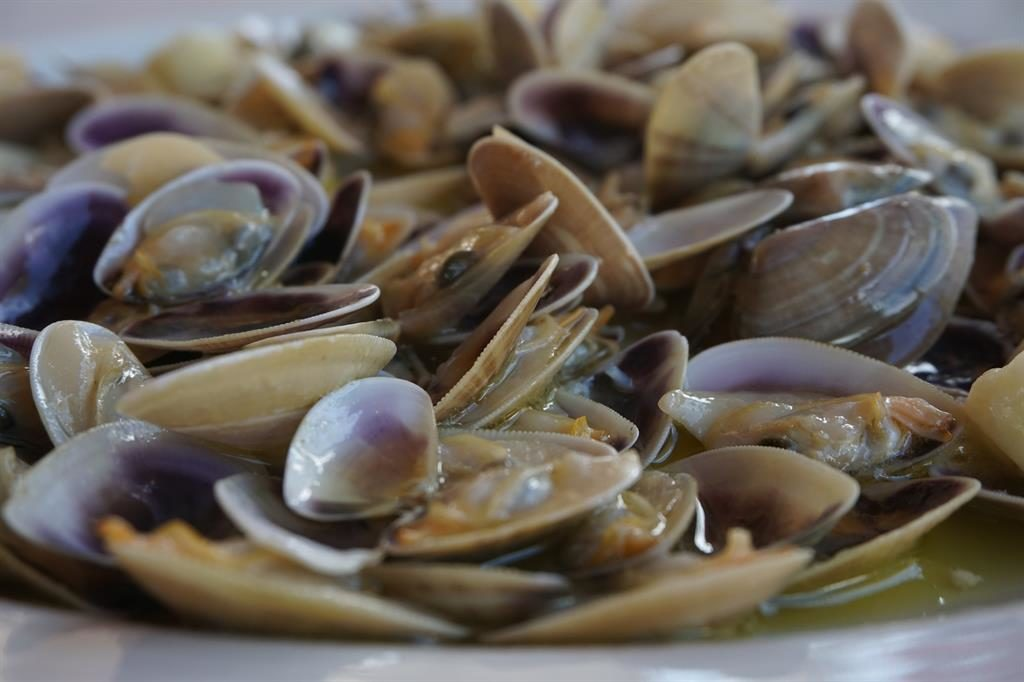fresh-seafood-isla-cristina