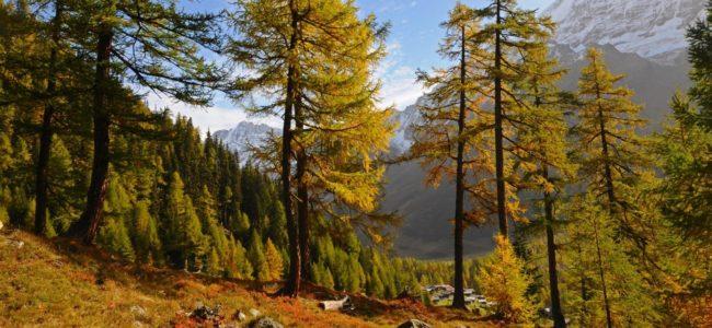 Malownicze doliny   TOP 6 Biuro podróży Goforworld by Kuźniar