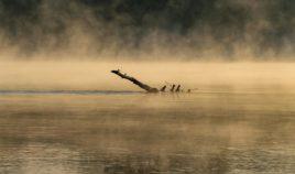 Fotografia to umiejętność patrzenia | GALERIA Biuro podróży Goforworld by Kuźniar