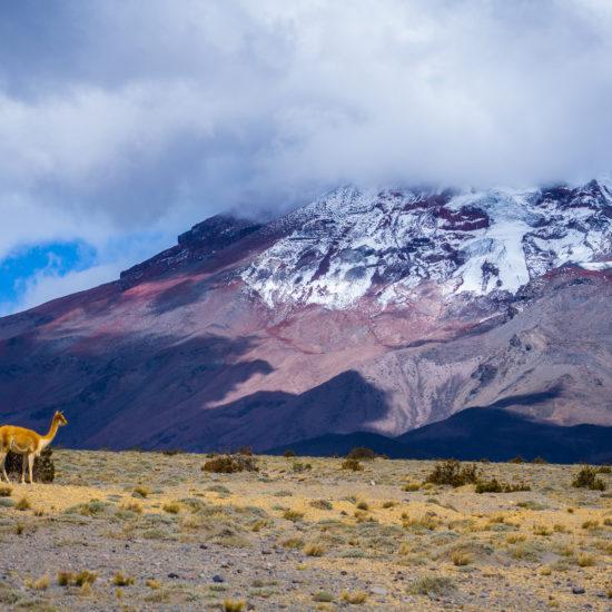 Ekwador Biuro podróży Goforworld by Kuźniar