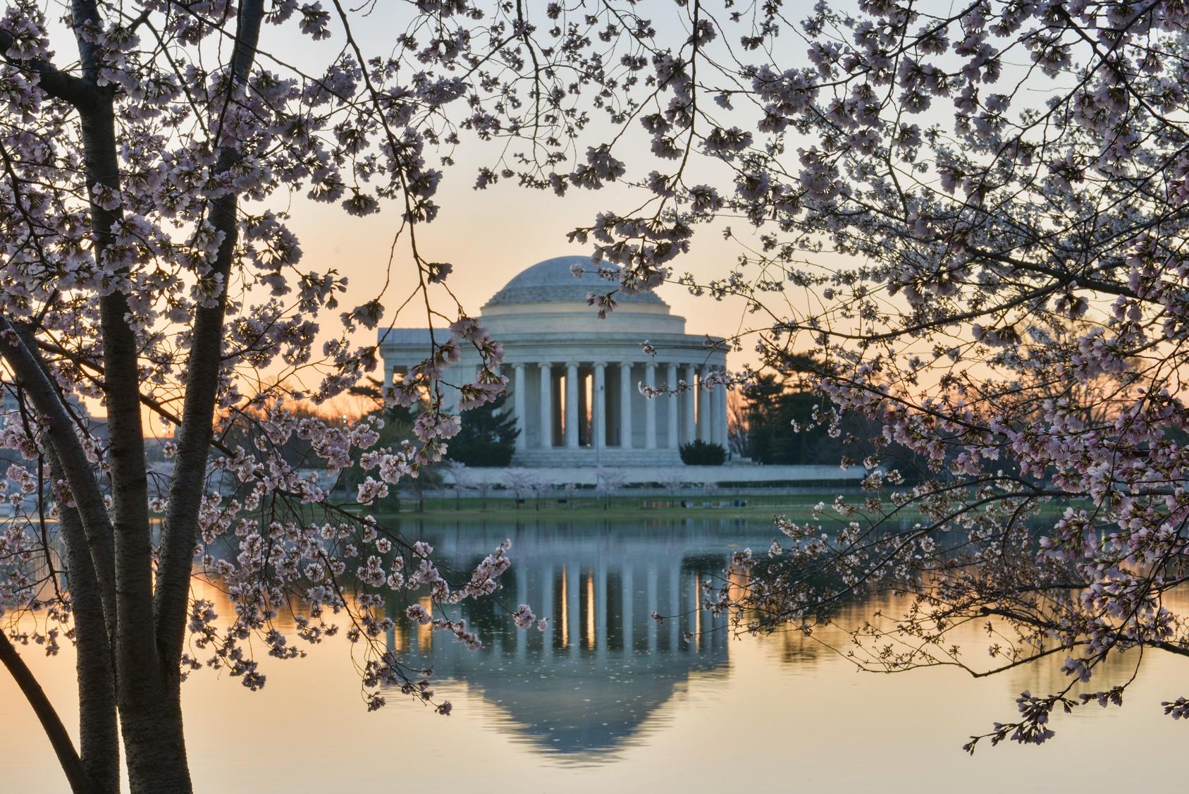 Wiosna w Waszyngtonie Biuro podróży Goforworld by Kuźniar