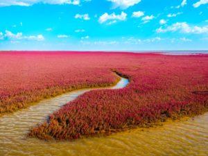 Czerwona plaża Biuro podróży Goforworld by Kuźniar