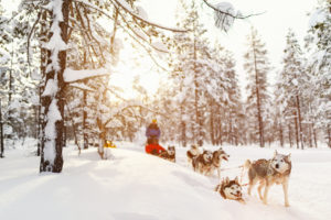 Finlandia: kraj na ucieczkę Biuro podróży Goforworld by Kuźniar