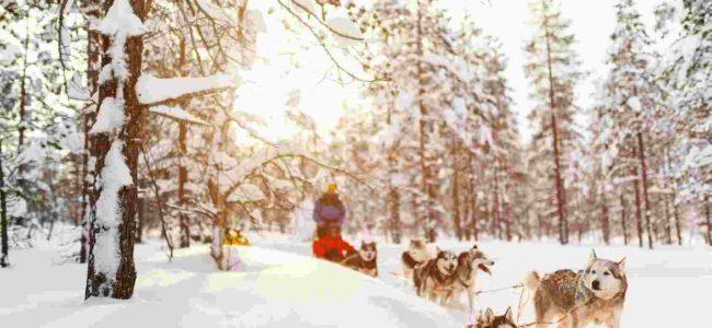 Finlandia z OnetOnTour Biuro podróży Goforworld by Kuźniar