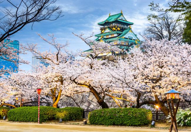 Kristina w Japonii Biuro podróży Goforworld by Kuźniar