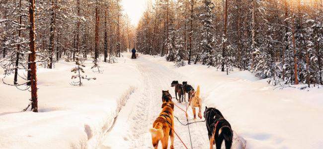 Mikołaj ma mniej śniegu? Biuro podróży Goforworld by Kuźniar