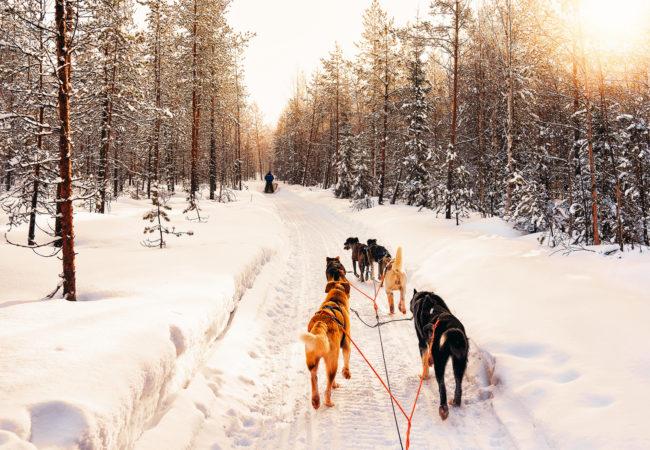 Najlepsza zima od lat Biuro podróży Goforworld by Kuźniar