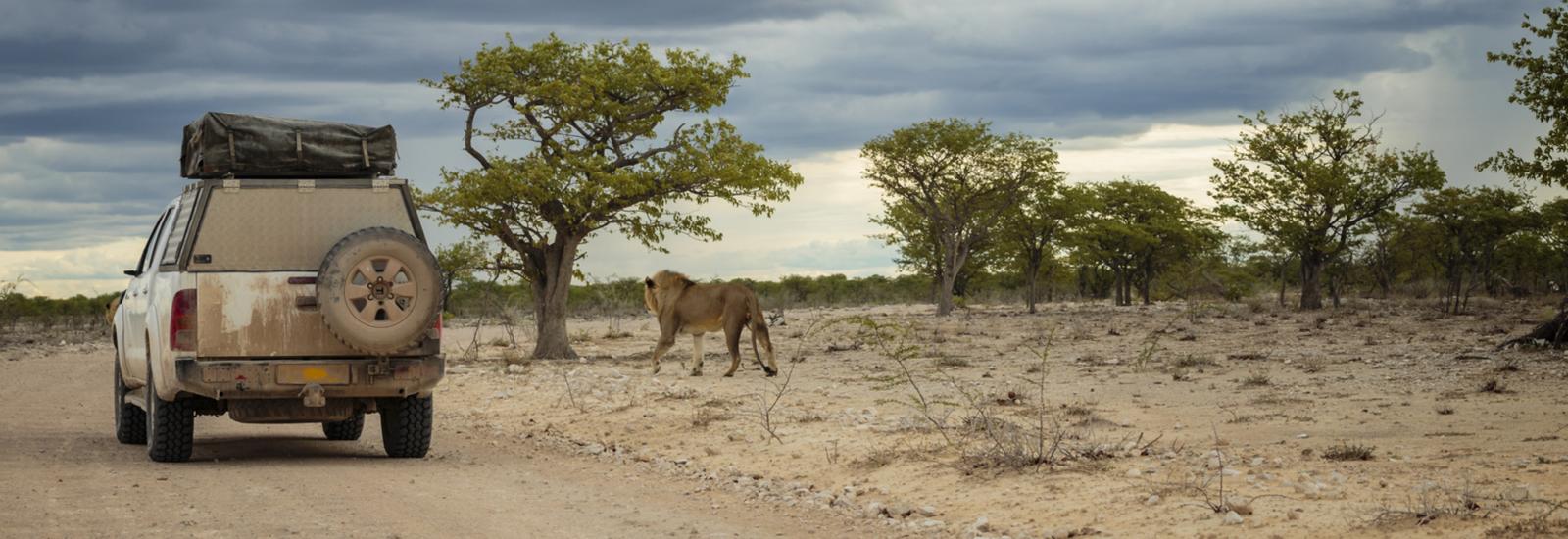 Namibia ➡ Wodospady Wiktorii Biuro podróży Goforworld by Kuźniar