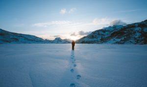 Samotnie przez Antarktydę Biuro podróży Goforworld by Kuźniar
