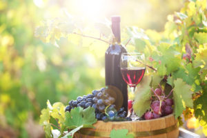 Podróże szlakiem wina! Biuro podróży Goforworld by Kuźniar