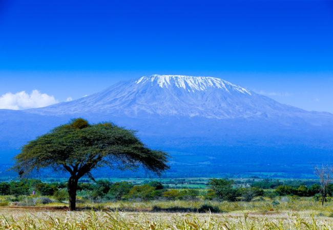 Kolejka nad Kilimandżaro? Biuro podróży Goforworld by Kuźniar
