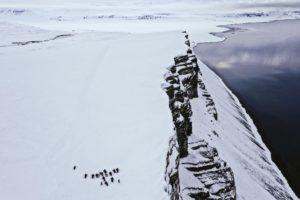 Spitsbergen poza zasięgiem Biuro podróży Goforworld by Kuźniar