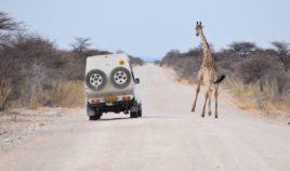 Czego nie wiesz o Namibii? Biuro podróży Goforworld by Kuźniar