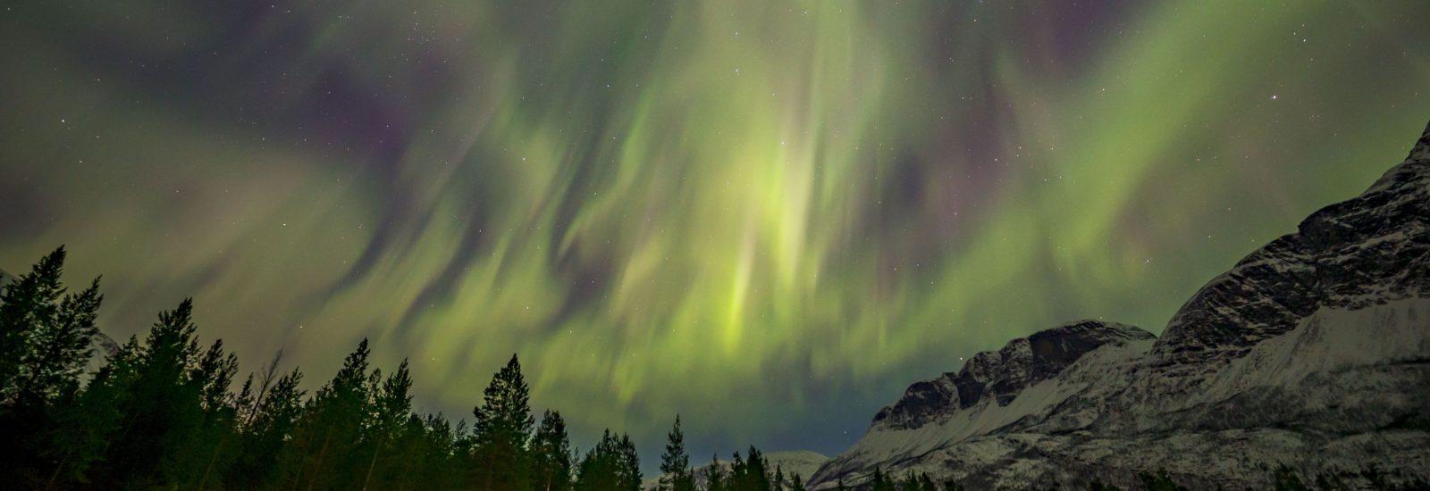 **Norwegia 🇳🇴   Styczeń 2021   ZORZA Biuro podróży Goforworld by Kuźniar