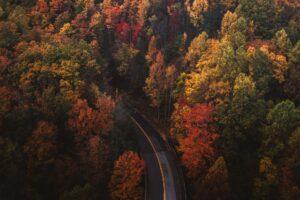 Jesień w Polsce - najpiękniejsza! Biuro podróży Goforworld by Kuźniar