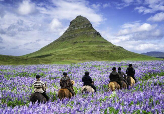 Islandia całkowicie znosi obostrzenia! Biuro podróży Goforworld by Kuźniar